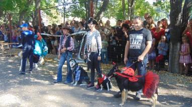 Дмитро Кірюхін виступив спонсором Всеукраїнської виставки собак